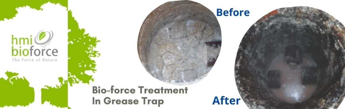 grease trap cleaning product